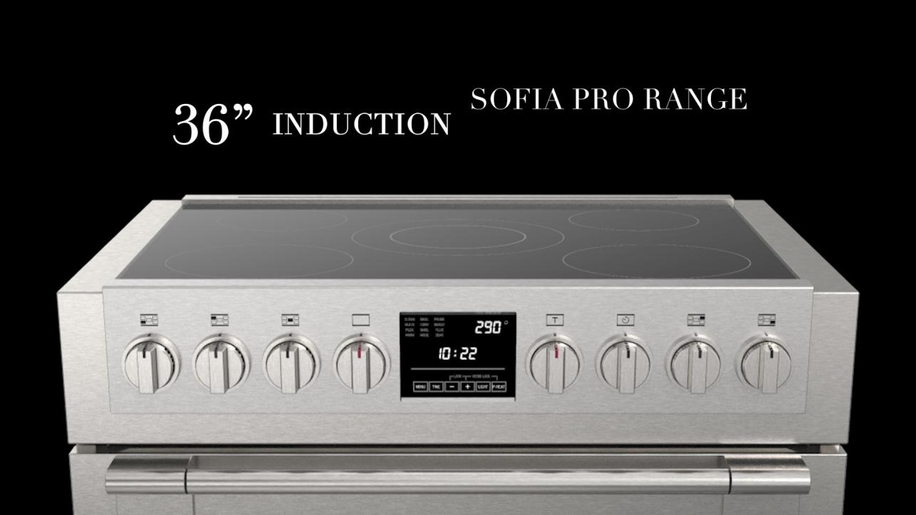 Sofia 36 induction